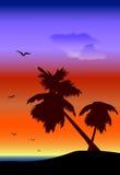 Paisaje de Palmtrees ilustración del vector