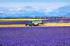 Paisaje de Provence, Francia Imágenes de archivo libres de regalías