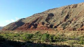 Paisaje de Redrock del desierto con el hábitat ripícola a lo largo del río de la Virgen foto de archivo libre de regalías