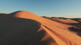 Paisaje de Sahara Desert, dunas maravillosas temprano por la mañana almacen de metraje de vídeo