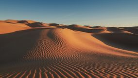 Paisaje de Sahara Desert, dunas maravillosas temprano por la mañana metrajes