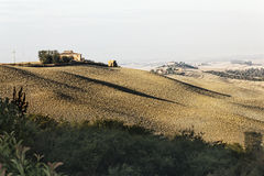 Paisaje de Siena Fotos de archivo libres de regalías