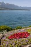 Paisaje de Suiza del lago lugano, de montañas y del flo colorido Foto de archivo libre de regalías