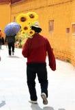 Paisaje de Tibets Foto de archivo