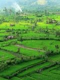 Paisaje de Tirtaganga Imagen de archivo libre de regalías