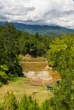 Paisaje de Toraja Foto de archivo