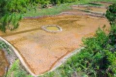 Paisaje de Toraja Imagen de archivo libre de regalías