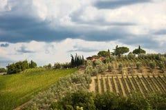 Paisaje de Toscana Imagen de archivo