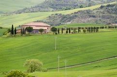 Paisaje de Toscana fotografía de archivo libre de regalías