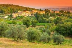 Paisaje de Toscana con la ciudad y la plantación verde oliva en la colina imagen de archivo