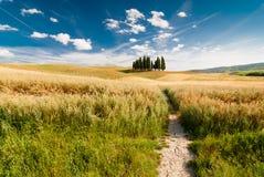 Paisaje de Toscana, Italia Imagen de archivo libre de regalías