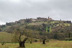 Paisaje de Toscana, Italia Imagen de archivo