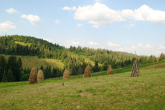 Paisaje de Ucrania Fotos de archivo