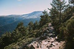 Paisaje de un camino en el bosque y las montañas imagen de archivo libre de regalías