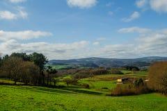 Paisaje de un campo verde con el fondo de los árboles imagen de archivo libre de regalías
