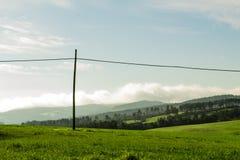 Paisaje de un campo verde con el fondo de los árboles fotos de archivo