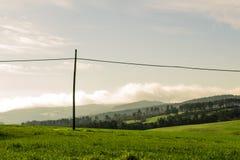 Paisaje de un campo verde con el fondo de los árboles fotografía de archivo libre de regalías
