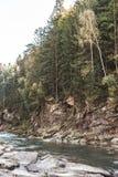 Paisaje de un río de la montaña ucrania Fotos de archivo