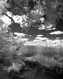 Paisaje de un tiro del lago en infared Imagen de archivo