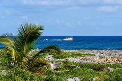 Paisaje de una costa costa tropical con las palmeras, el mar y el cielo azul Regatas del motor a través del mar Fotografía de archivo libre de regalías