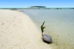 Paisaje de una isla del pie en el cocinero Islands de la laguna de Aitutaki Foto de archivo libre de regalías