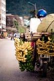 Paisaje de Vietnam Imágenes de archivo libres de regalías