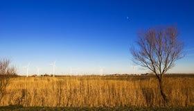Paisaje de Windturbine imagen de archivo