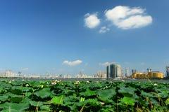 Paisaje de Wuhan Fotografía de archivo libre de regalías