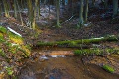 Paisaje del último bosque otoñal con la primera nieve y la pequeña corriente Imagen de archivo