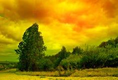 Paisaje del abctract del árbol y del cielo Imagen de archivo libre de regalías