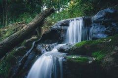 Paisaje del agua de manatial de la selva tropical Exposición larga foto de archivo libre de regalías