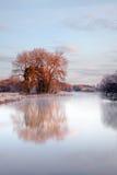 Paisaje del agua del invierno Imágenes de archivo libres de regalías
