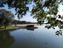 Paisaje del agua del lago en la mañana imagenes de archivo