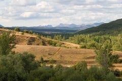 Paisaje del arbolado del roble con las montañas en el fondo Fotografía de archivo libre de regalías