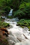 Paisaje del bosque con la pequeña cascada Imágenes de archivo libres de regalías