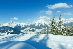 Paisaje del bosque del abeto de la montaña del invierno fotos de archivo