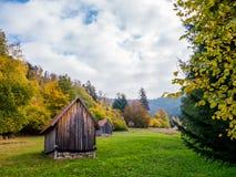 Paisaje del bosque negro con las vertientes en otoño imagen de archivo