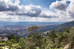 Paisaje del bosque y de Bucaramanga Imagen de archivo libre de regalías