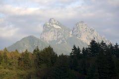 Paisaje del bosque y de la montaña imágenes de archivo libres de regalías