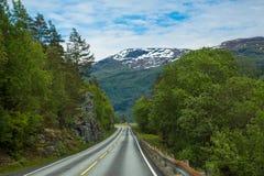 Paisaje del camino de Noruega fotografía de archivo libre de regalías