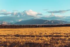 Paisaje del camino de Nueva Zelanda Fotos de archivo libres de regalías