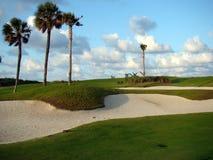 Paisaje del campo de golf del par 3 del Palm Beach, la Florida Fotos de archivo libres de regalías