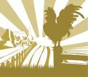 Paisaje del campo de granja del gallo Fotografía de archivo libre de regalías