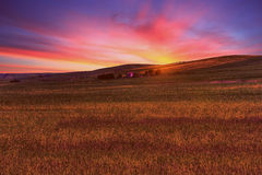 Paisaje del campo de hierba verde debajo del cielo de la puesta del sol de la caída del sol con las nubes suaves en primavera Imagen de archivo libre de regalías