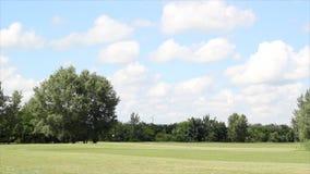 Paisaje del campo del golf metrajes