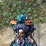Paisaje del carnaval Fotos de archivo