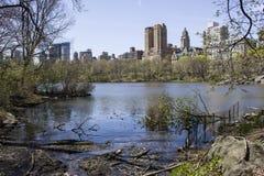 Paisaje del Central Park Fotografía de archivo