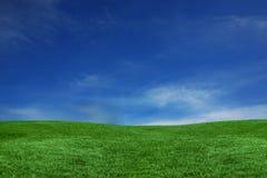Paisaje del cielo azul y de la hierba verde Imagen de archivo libre de regalías