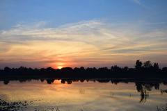 Paisaje del cielo y de la silueta anaranjados del árbol imágenes de archivo libres de regalías