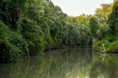 Paisaje del delta de Danubio Imagenes de archivo